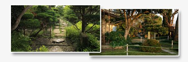 Articles de presse de fran oise lacaze du jardin la for Le jardin zen beaumont monteux